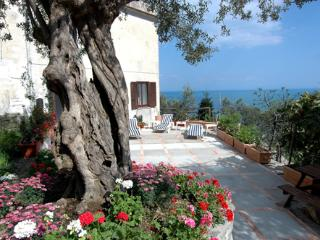Villa Michelle In Amalfi - Amalfi vacation rentals