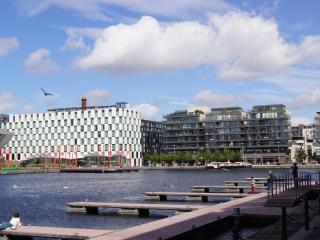 Stay City Center Accomodation - Dublin vacation rentals