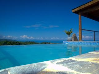 BEAUTIFUL RETREAT WITH BREATHTAKING OCEAN VIEW ! - Las Terrenas vacation rentals