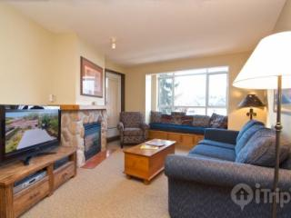 Nicely remodeled Deer Lodge 1 Bed, 1 Bath condo in Whistler Village Unit 350 - British Columbia Mountains vacation rentals