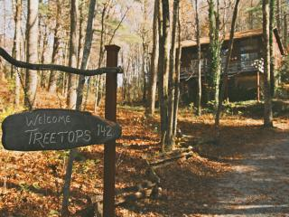 'Treetops' in the North Ga Mountains.  With WIFI! - North Georgia Mountains vacation rentals