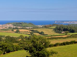 Devon, near Totnes, Beautful Mansion House Apartment - Blagdon vacation rentals