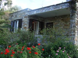 Beach Cottage - Siros vacation rentals