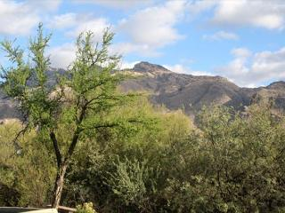 1st Floor Corner unit with All wood floors and Wrap Around Patio   Mtn Views - Tucson vacation rentals