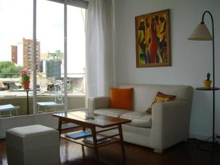 Nice and comfortable apartment, bright and great located in the best place of Buenos Aires! - Buenos Aires vacation rentals