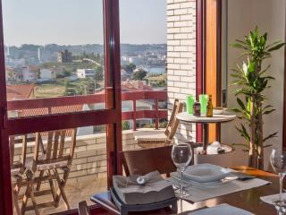 Douro Marina River View - Porto vacation rentals