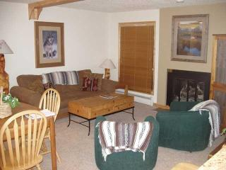 Lovely Affordable Vail 2bd/2ba condo with pool and hot tubs near lifts - Vail vacation rentals