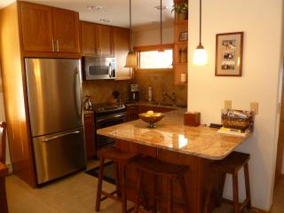 Beautiful 2bd/2ba in Vail near lifts on shuttle - Vail vacation rentals