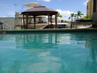 Designer House With Pool On The Miami River 3bd 2b - Coconut Grove vacation rentals