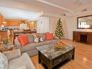 Amazing 3 Bedroom Apartment Near Times Square - Teaneck vacation rentals