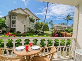 Kauai Island Oasis with 2 Beds! - Kapaa vacation rentals