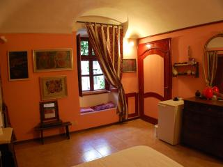 MioMay - cosy atmosphere no kitchen - Pino Torinese vacation rentals
