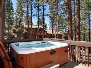 Tahoe Lake Village 57 Burke Creek Circle NV (BCC57 - Zephyr Cove vacation rentals