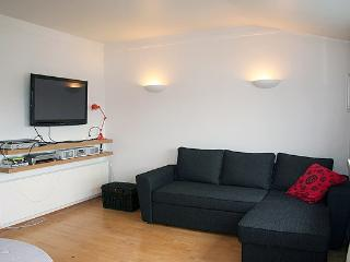 Cozy Downtown - Reykjavik vacation rentals