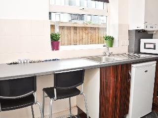 Beautiful 2 bed serviced flat, N4 - London vacation rentals