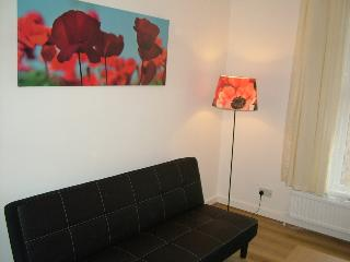 Wonderful 3 bed serviced apartment - London vacation rentals