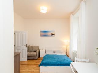 Lovely apartment on the Vltava bank - Czech Republic vacation rentals