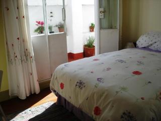 Central, charming, quiet 2brm apt near subtes D&B - Buenos Aires vacation rentals