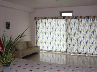 Arenal Maleku Luxury Condo 12-2-3-4 - Washington vacation rentals
