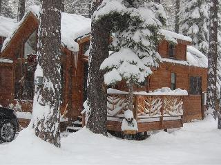 Cozy Knotty Pine Cabin - South Tahoe vacation rentals
