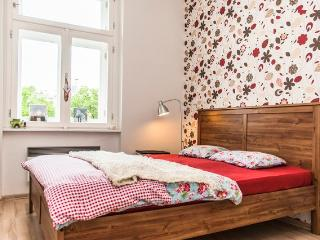 Lovely,close to the Centre, with Free Parking - Prague vacation rentals