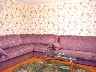 Kherson 4-rooms self contained appartment - Kherson vacation rentals