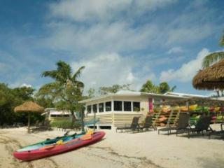 Whelk Conch / Fighting Conch / Queen Conch - Conch Key vacation rentals