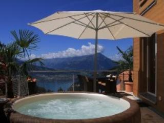 LLAG Luxury Vacation Apartment in Beatenberg - 764 sqft, quiet, comfortable, relaxing (# 4518) - Beatenberg vacation rentals