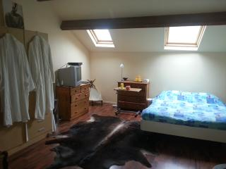 For rent house in Haute Marne - Bourbonne-les-Bains vacation rentals