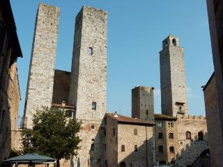 Stone House Apartment in the heart of S.Gimignano - San Gimignano vacation rentals