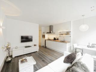 Apartment Amsterdam - Amsterdam vacation rentals