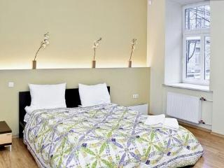 Best Location at Gediminas Avenue - Vilnius vacation rentals