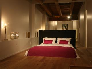 LA SUITE MIROIRS - Vieux Lyon - Arnas vacation rentals