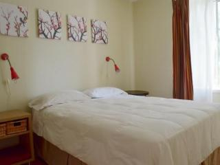 Nice Downtown Apartment Village - Montreal vacation rentals