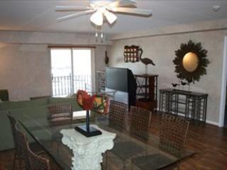 Caribbean Luxury 105726 - Virginia vacation rentals