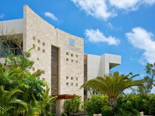 Luxxe Villa Master Suite - 2BR - Riviera Maya, MX - Paamul vacation rentals