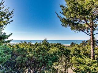 Sandpiper's Nest - Waldport vacation rentals