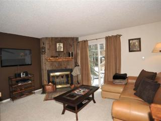 Comfortable In Town 1 Bedroom Condo - Tannhauser II #3 - Breckenridge vacation rentals