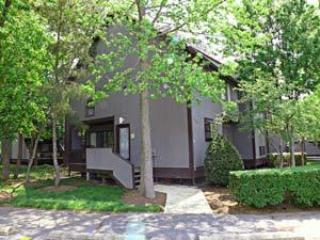 3206 Round Robin Way - Image 1 - Bethany Beach - rentals