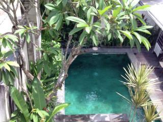 Affordable 2bedroom House in Petitenget - Kerobokan vacation rentals