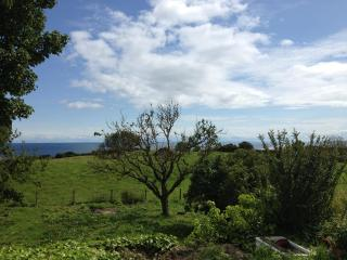Palm Tree Cottage with Sea View near Helmsdale - Helmsdale vacation rentals