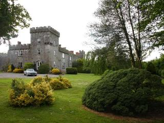 Fanningstown Castle, Adare, Co Limerick  Sleeps 10 - County Limerick vacation rentals