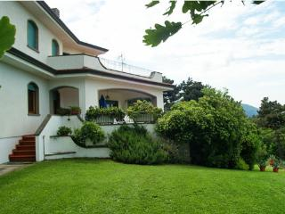 Charming Villa on the hills of Tuscany - Lucca vacation rentals