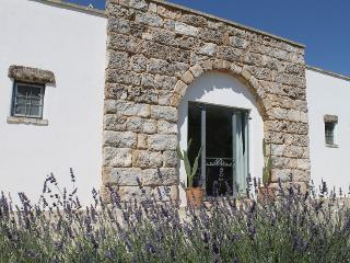 Charming house with garden near the sea - Diso vacation rentals