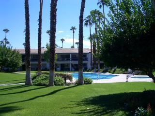 View From Patio - Lovely Palm Springs Condo - Palm Springs - rentals