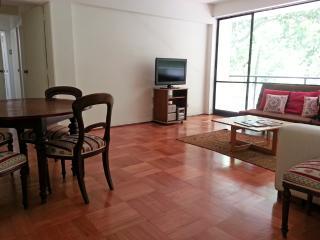 Spacious 2 Bedrooms Apt in Great Santiago location - Pomaire vacation rentals