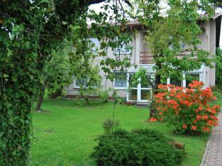 3B Apartment Borek98 - Hluboka nad Vltavou vacation rentals