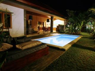 Luxury Villa Divinka, close to the beach, pool, garden - Canggu vacation rentals