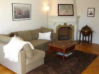Mid Century View Flat - Close to everything, Roomy & Bright, New Kitchen - San Francisco vacation rentals