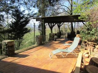 SOMETHING SPECIAL FOR NATURE LOVERS WITH BEAUTIFUL PANORAMIC VIEW - 3 STARS - Offenburg vacation rentals
